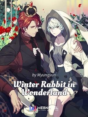 Winter Rabbit in Wonderland